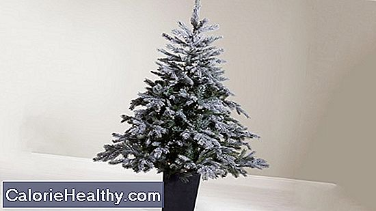 Christmas tree: real or artificial?